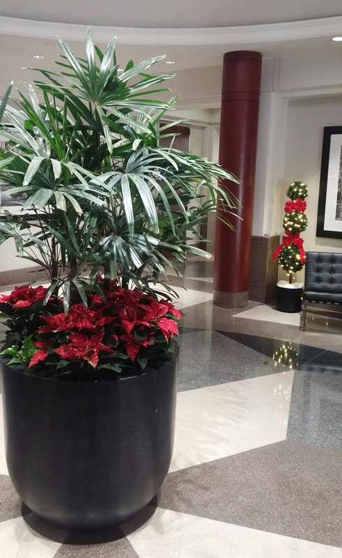 Holiday office decorating in Roanoke, VA